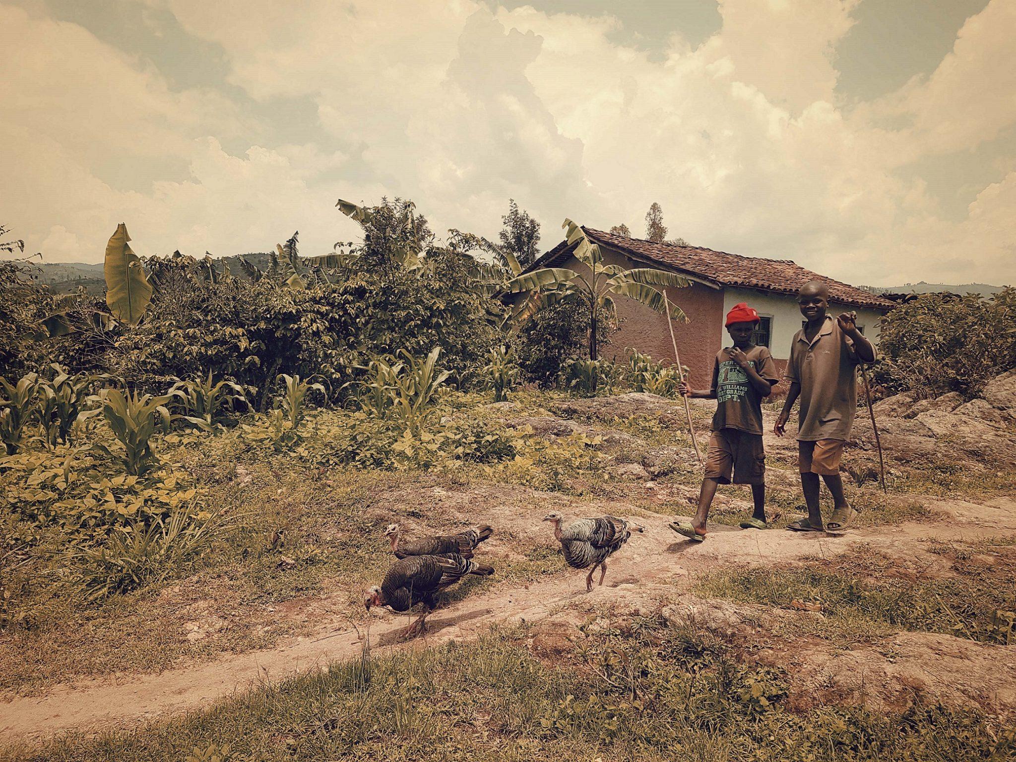 Afrika  Uganda - Stefan Richter