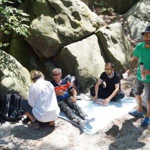 yOUR Community - Wanderung 06/19 - Forststeig © M. Gottwald
