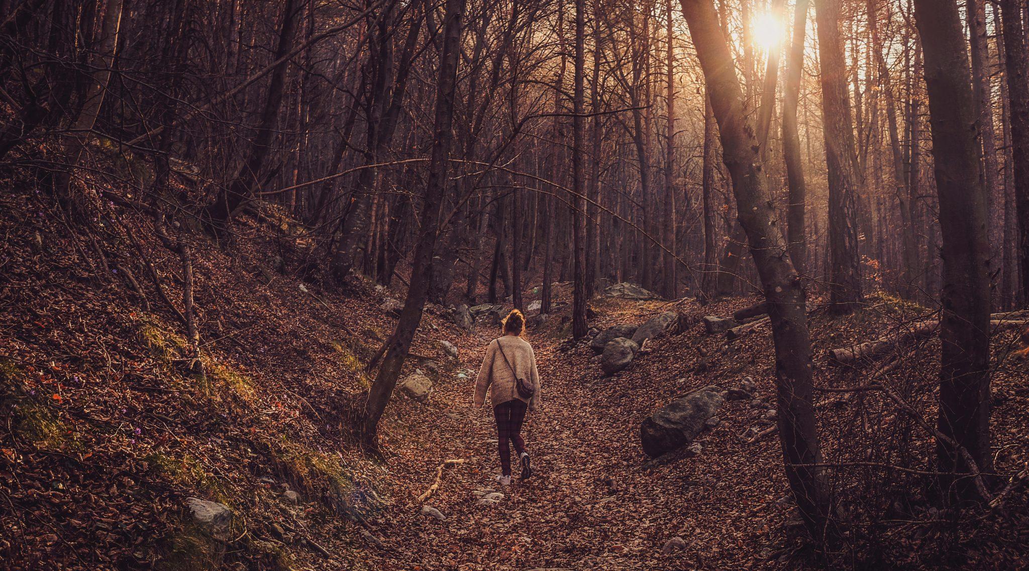 Wanderung - Rabenauer Grund